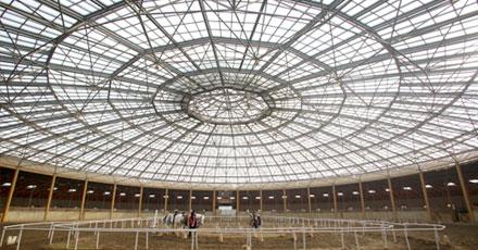 BerAdel Equestrian Club