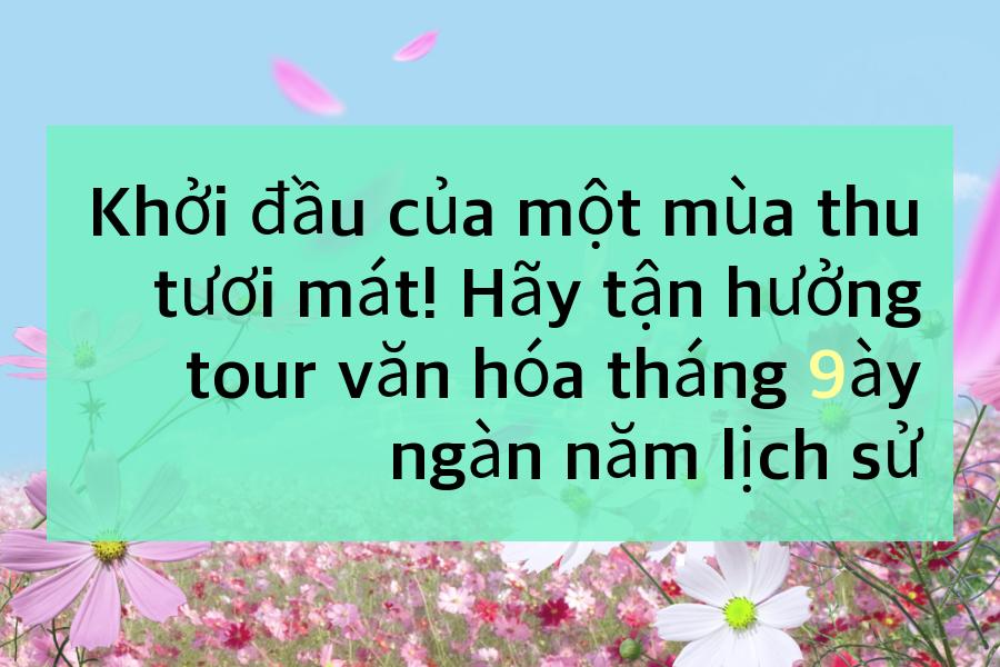 sep-cul-th_vie
